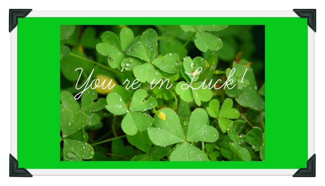Clover and text, You're in luck!
